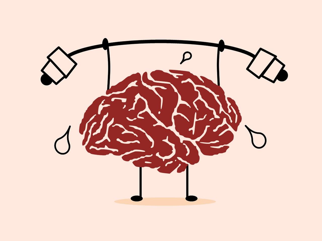 De wonderlijke veerkracht van de hersenen 1