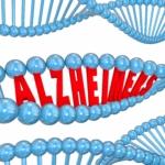 Vierde alzheimer-gen gevonden