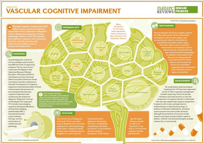 """Vascular Cognitive Impairment"" een publicatie in Nature Reviews Disease Primers 3"