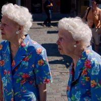 Artikel: Tweelingen geven inzicht in alzheimer