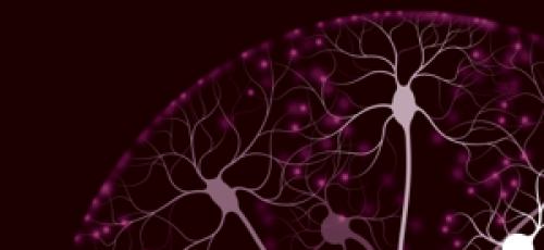 Nieuwste ontwikkelingen van ziekte van Alzheimer vanuit twee perspectieven