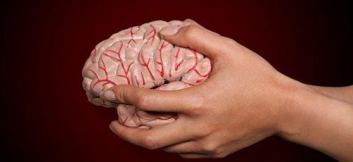 Neurowetenschapper Marissa Zwan nieuwe programmacoördinator VU master Neurosciences