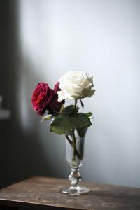 rozen voor ouders van Co Adriaanse