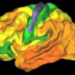20 jaar onderzoek naar alzheimer