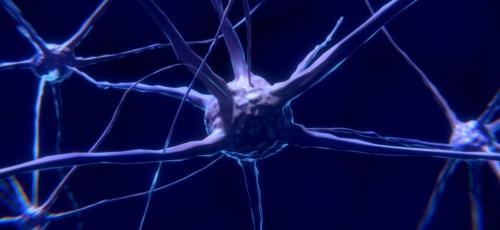 Promotie Ellen Dicks: Hersennetwerken kunnen weefselverlies voorspellen